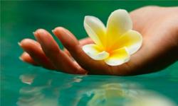 Красота здоровье wellness oriflame