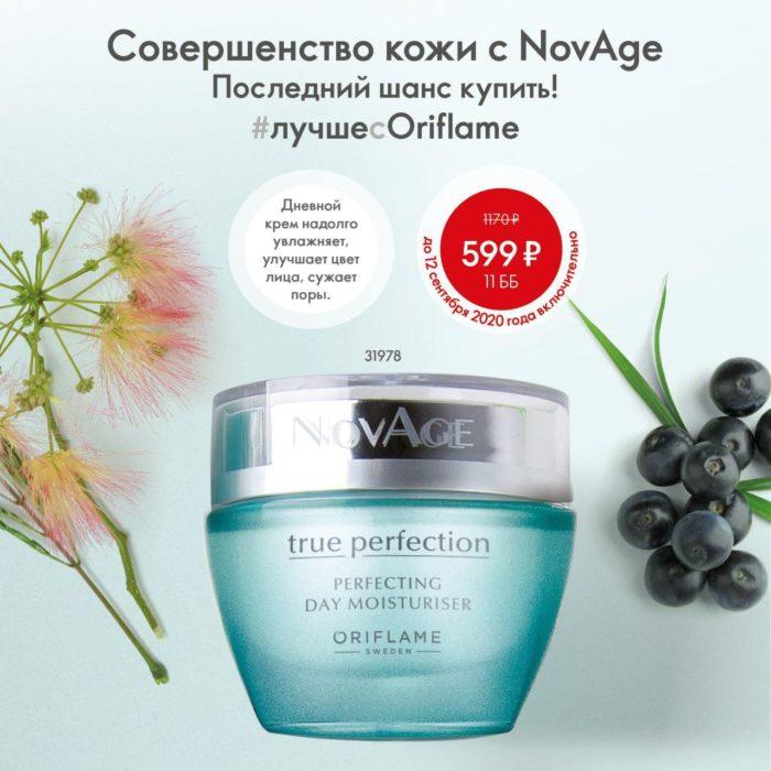 31978 - Дневной увлажняющий крем для совершенства кожи NovAge True Perfection